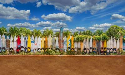 排成篱笆模样的旧滑板
